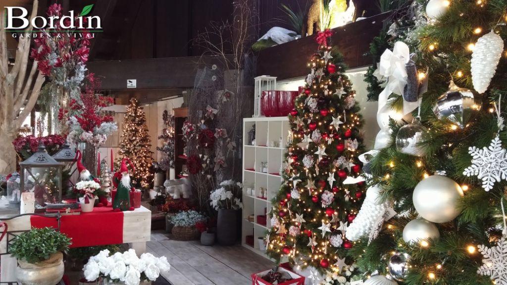 Addobbi natalizi bordin garden vivai - Addobbi natalizi da giardino ...